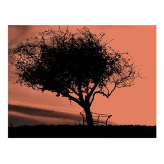 Glastonbury Hawthorn. Tree on Hill. Orange Black. Postcard