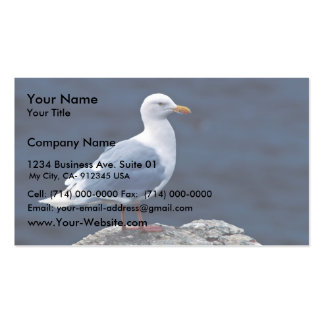 Glaucous Gull Business Cards
