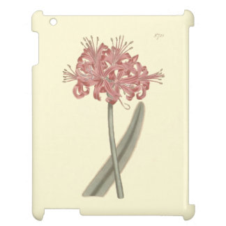 Glaucous Leaved Amaryllis Botanical Illustration iPad Cases