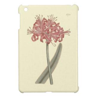 Glaucous Leaved Amaryllis Botanical Illustration iPad Mini Cover