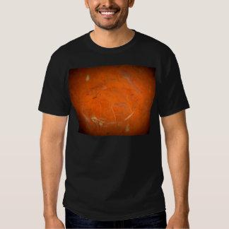 Glazed Terracotta T-shirt