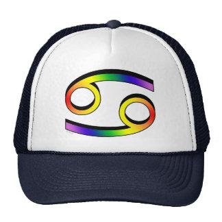 GLBT Cancer Trucker Hat