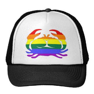 GLBT Pride Cancer June 22 - July 22 Mesh Hats