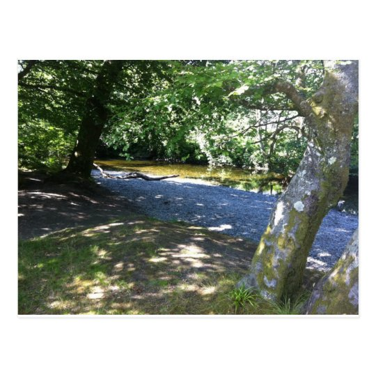 Glebe in the Scottish Trossachs Postcard