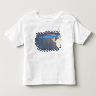 Glen Canyon Dam on the Colorado River at Page, Toddler T-Shirt