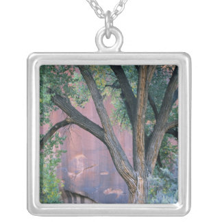 Glen Canyon National Recreation Area, Utah. USA. Silver Plated Necklace