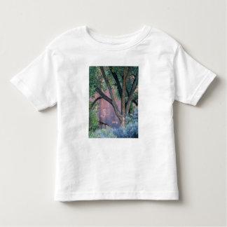 Glen Canyon National Recreation Area, Utah. USA. Toddler T-Shirt
