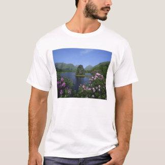 Glen Etive, Highlands, Scotland T-Shirt