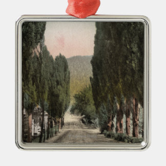Glenwood Springs, Colorado Christmas Ornament