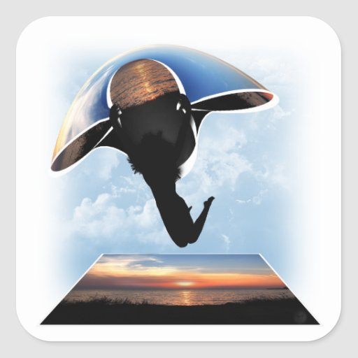 Gliding at Sunset Square Stickers