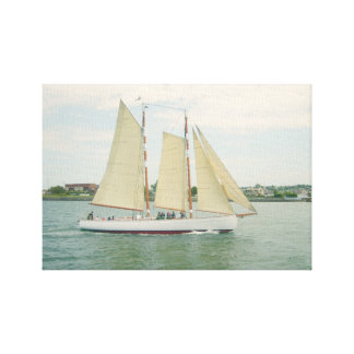 Gliding in Full Sail Canvas Wall Hanging Canvas Prints