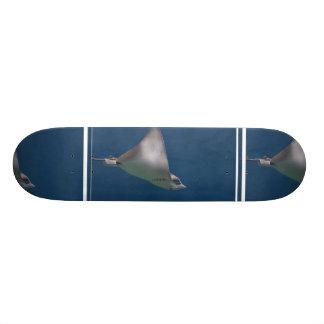 Gliding Stingray Skateboards