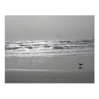 Glistening Waves Postcard