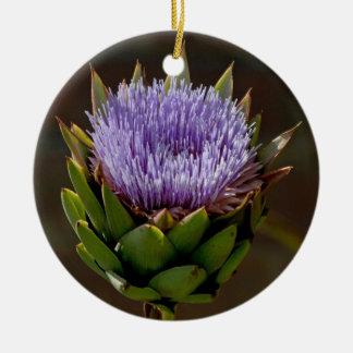 Globe Artichoke, Cynara Cardunculus, in flower. Christmas Ornament