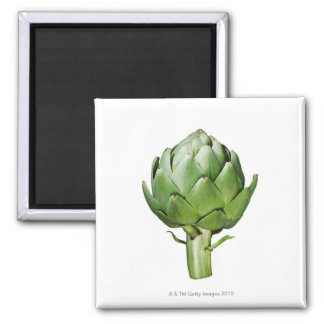 Globe Artichoke on White Background Cut Out Magnet