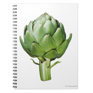 Globe Artichoke on White Background Cut Out Note Books
