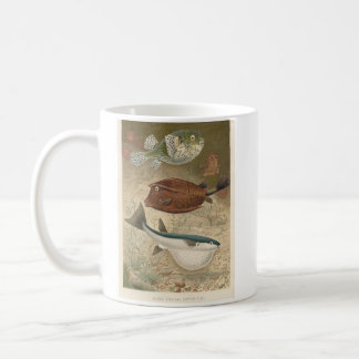 Globe Fish & Coffer Fish Bookstore Promo Basic White Mug