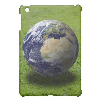 Globe on lawn 2 iPad mini cover