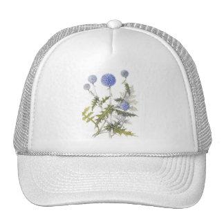 Globe Thistle Collection Cap