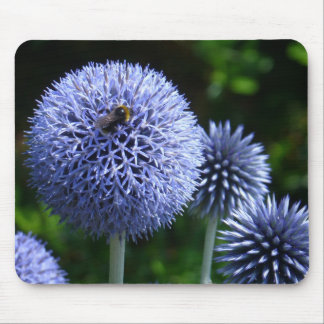 Globe Thistle Flowers Mousepad