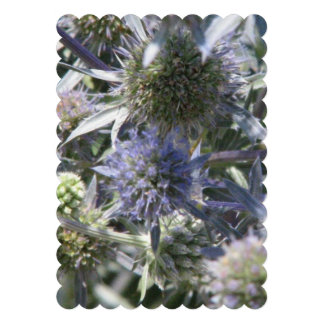 Globe Thistle Personalized Announcements