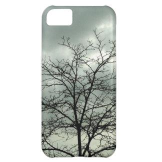 gloomy day iPhone 5C case