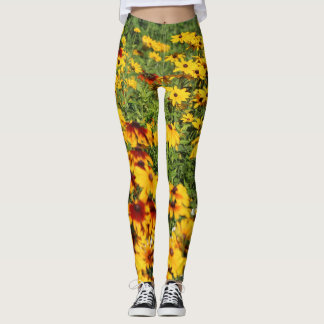 Gloriosa Daisies Along a Garden Path Leggings