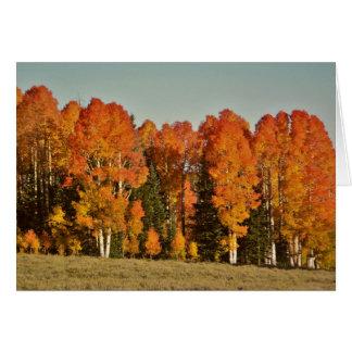Glorious Autumn Trees Greeting Card