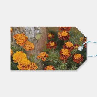 Glorious Marigolds