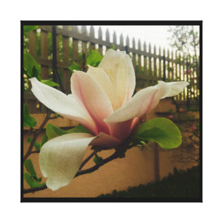 Glorious pink magnolia canvas print