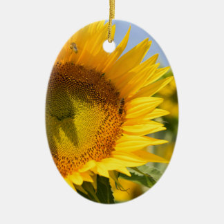 Glorious sunflowers! christmas ornament