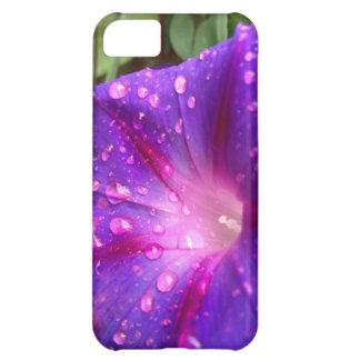 Glory, Glory, hallelujah! i-phone 5 case iPhone 5C Case