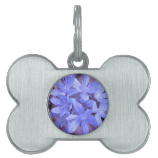 Glory of the Snow Blue Pet Tag