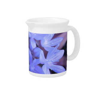 Glory of the Snow Blue Pitcher