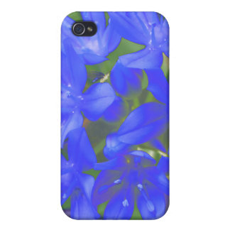 Glory Of The Snow Fluorescent Blue  Case For The iPhone 4