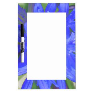 Glory of the Snow Fluorescent Blue Memo Board
