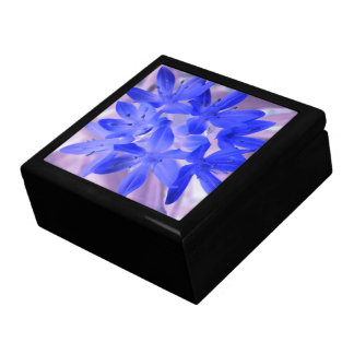 Glory of the Snow Shocking Blue Gift Box