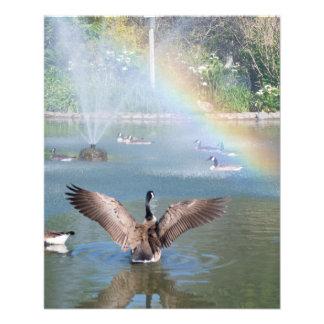 Glory Rainbow Full Color Flyer
