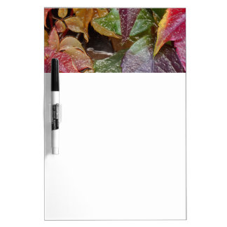 Glossy autumn leaves, Wax-Look 001.1.2 Dry Erase Board