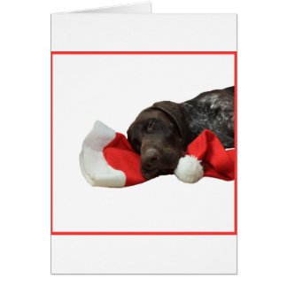 Glossy Grizzly Christmas Pointer Note Card
