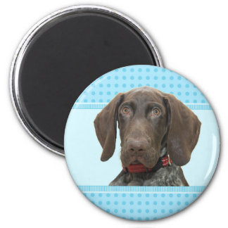 Glossy Grizzly in Blue Kitchen & Dining 6 Cm Round Magnet