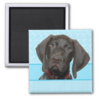 Glossy Grizzly in Blue Kitchen & Dining Refrigerator Magnets
