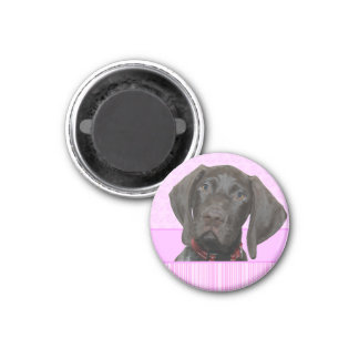 Glossy Grizzly in Pink 3 Cm Round Magnet