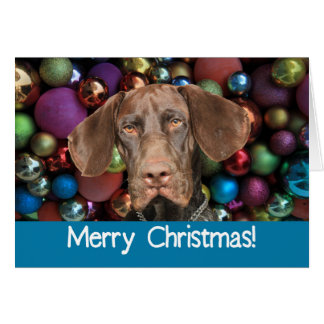 Glossy Grizzly Merry Christmas card