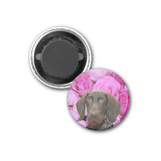Glossy Grizzly Valentine's Puppy Love Refrigerator Magnets