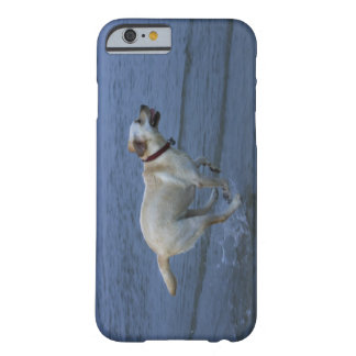 Gloucester, Massachusetts, USA 2 Barely There iPhone 6 Case