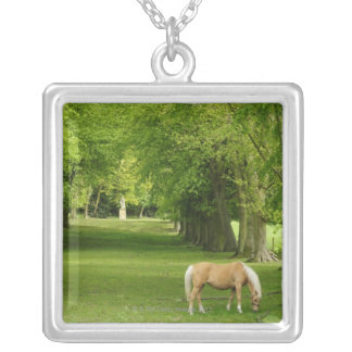 Gloucestershire, UK Silver Plated Necklace