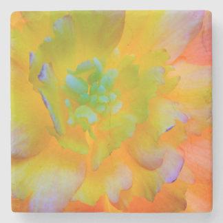 Glowing Begonia Blossom | Seabeck, WA Stone Coaster