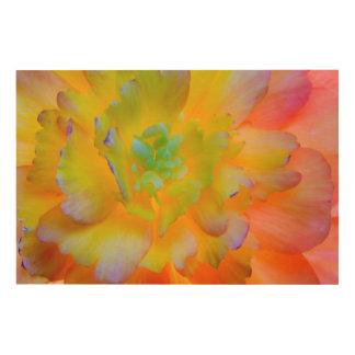 Glowing Begonia Blossom | Seabeck, WA Wood Wall Decor
