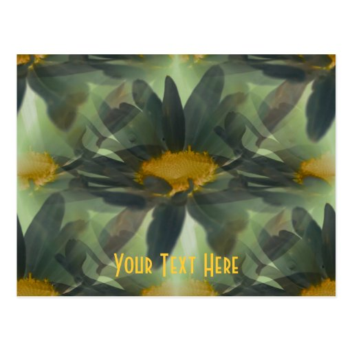 Glowing Black Daisies Floral Customizable Postcard